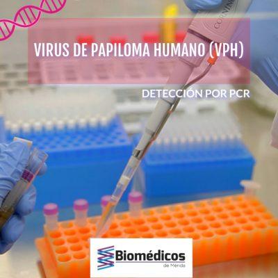 PCR VPH Secuenciacion